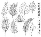 set of tropical leaves. vector... | Shutterstock .eps vector #1102820033