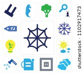 set of 13 icons such as cobweb  ...