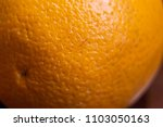 close up macro of orange... | Shutterstock . vector #1103050163