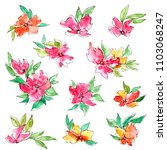 watercolor flowers set. drawing ... | Shutterstock . vector #1103068247