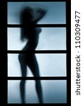 silhouette of woman in the...