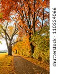 Image of the bright autumn park - stock photo