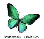Green Butterfly Flying ...
