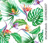 tropical floral vector seamless ... | Shutterstock .eps vector #1104826037