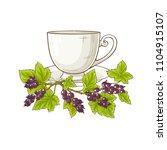 black currant tea illustration   Shutterstock .eps vector #1104915107