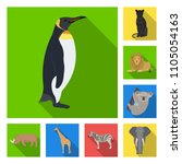 different animals flat icons in ... | Shutterstock .eps vector #1105054163