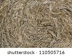 Straw closeup for backgrounds - stock photo