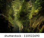 the river through the rocks in wild forest (Czech Switzerland) - stock photo