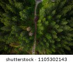 dirt track road in forest... | Shutterstock . vector #1105302143