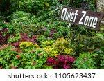 flower garden at tagaytay ... | Shutterstock . vector #1105623437