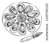 hand drawn sketch oyster set.... | Shutterstock . vector #1105700123