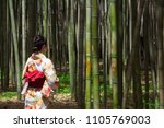 a japanese woman in a beautiful ... | Shutterstock . vector #1105769003