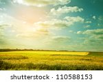Stock photo village wheat field in abstract color 110588153