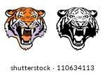 tiger head  vector image front...