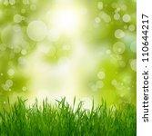 natural summer green background | Shutterstock . vector #110644217