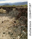 Small photo of Improper disposal of wooden and metal grape stakes (dumped) used by farmers in California