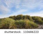 Dunes At The Danish North Sea...