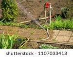 gardening in the summer house...   Shutterstock . vector #1107033413
