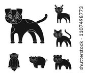 toy animals black icons in set... | Shutterstock . vector #1107498773