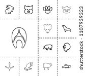 wildlife icon. collection of 13 ... | Shutterstock .eps vector #1107939323