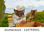 Apiarist is working in his apiary. - stock photo