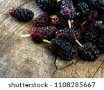 mulberry  morus   healthy fruit ... | Shutterstock . vector #1108285667