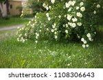natural abstract soft green...   Shutterstock . vector #1108306643