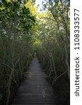 Small photo of Wooden Bridge in Mangrove Forest at Laem Phak Bia, Phetchaburi, Thailand