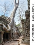 ta prohm temple with giant... | Shutterstock . vector #1108350917