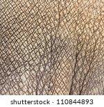 Rhino Skin Texture Background