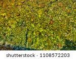 stony sea bottom | Shutterstock . vector #1108572203