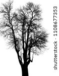 the branches of trees and trees ...   Shutterstock . vector #1108677353