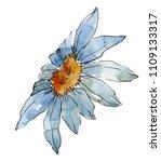wildflower daisy. floral...   Shutterstock . vector #1109133317