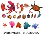 set of marine animals  corals... | Shutterstock .eps vector #1109309927