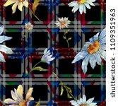 wildflower daisy. floral...   Shutterstock . vector #1109351963