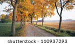 Road In Autumn  Sweden