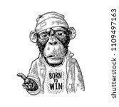 monkeys begging dressed in a... | Shutterstock .eps vector #1109497163