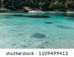 beautiful clear sea by a pine...   Shutterstock . vector #1109499413