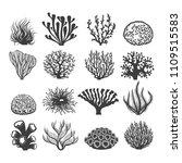 aquatic corals. natural... | Shutterstock .eps vector #1109515583