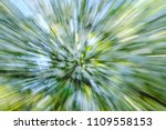 Small photo of Abstract green bloom flower of tree background of tree in countryside outdoors. Zoom blossom speed blured motion. Created by zooming out.