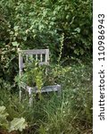 Old Wooden Chair In Wild...