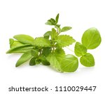 fresh spices and herbs isolated ... | Shutterstock . vector #1110029447