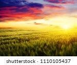 sunset on the wheat field | Shutterstock . vector #1110105437