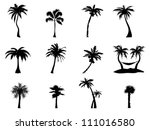 palm tree Silhouette - stock vector