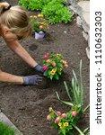 Small photo of Summer time gardening progress