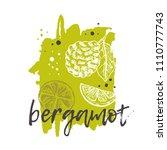 bergamot concept design. hand... | Shutterstock .eps vector #1110777743