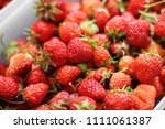 strawberry. strawberries in... | Shutterstock . vector #1111061387