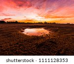 beautiful  bright  saturated ... | Shutterstock . vector #1111128353