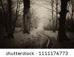 dark forest road landscape ... | Shutterstock . vector #1111176773