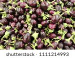 on the market are sold...   Shutterstock . vector #1111214993